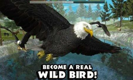 Ultimate Bird Simulator 1.3 Apk + Mod for android